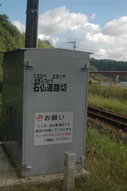 DSC_6266 (Small).JPG